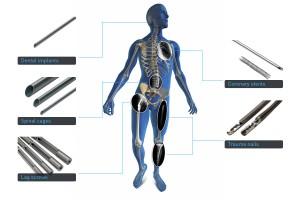 Skeleton-fullsize