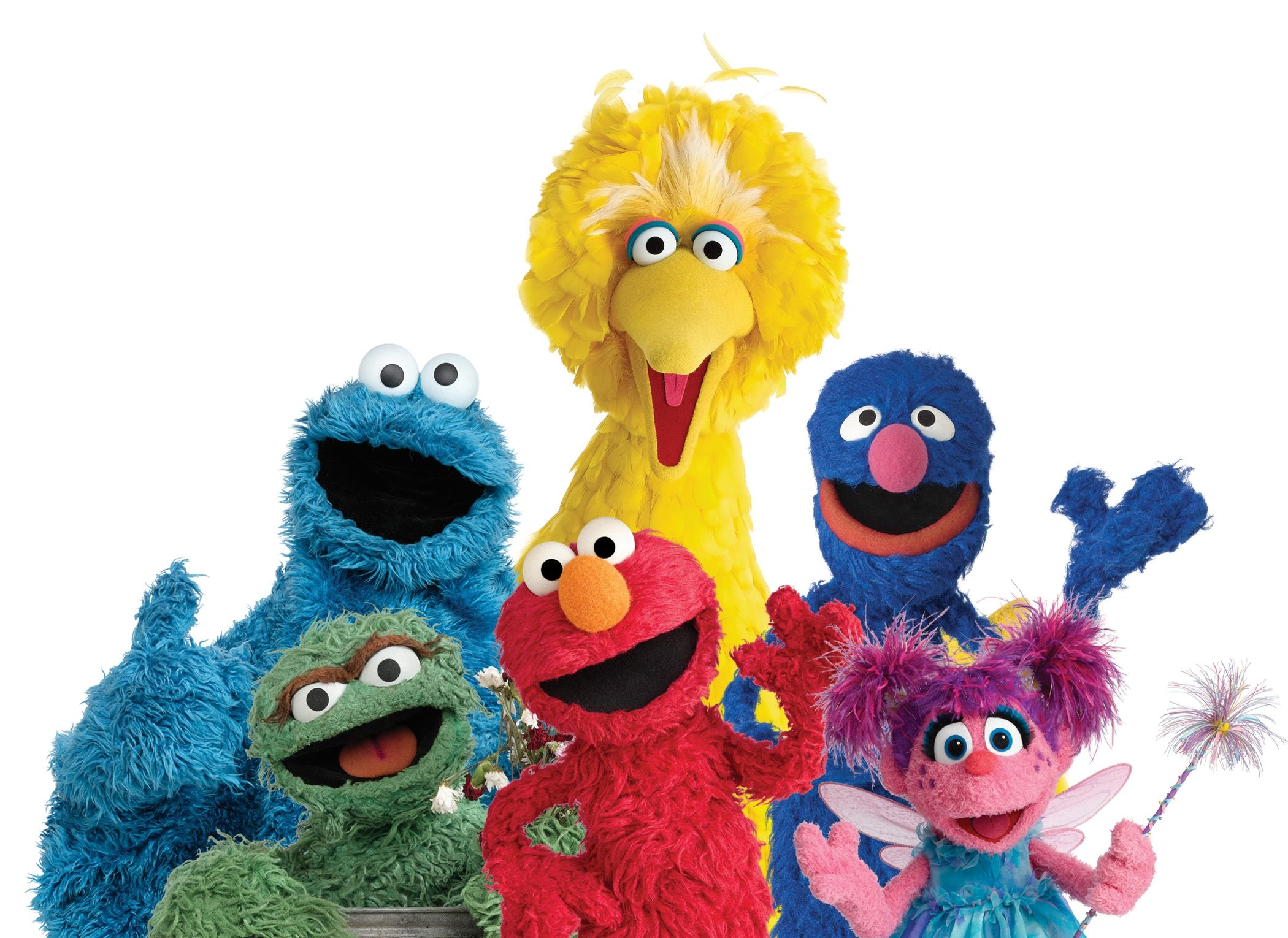 This is a picture of Revered Sesame Street Images