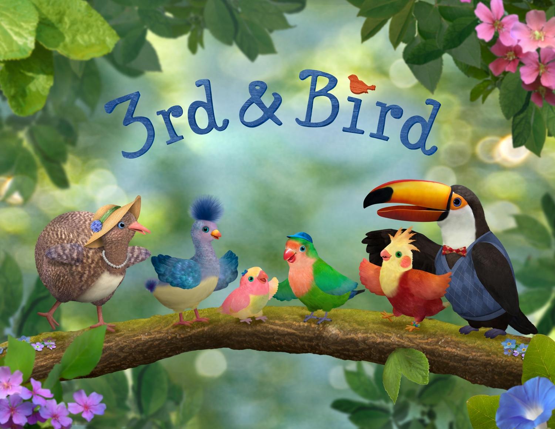 3rdandBird