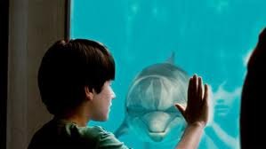 DolphinTale