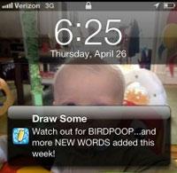 Birdpoop3