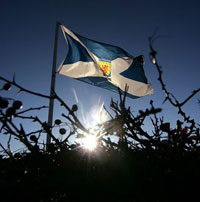 Scottish-Flag3