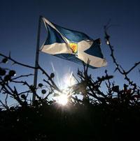Scottish-Flag3