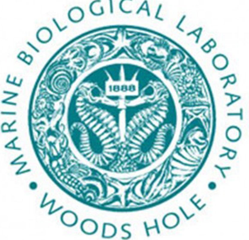 MBL-Logo