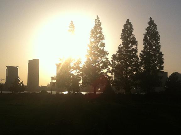 Sunset (3)