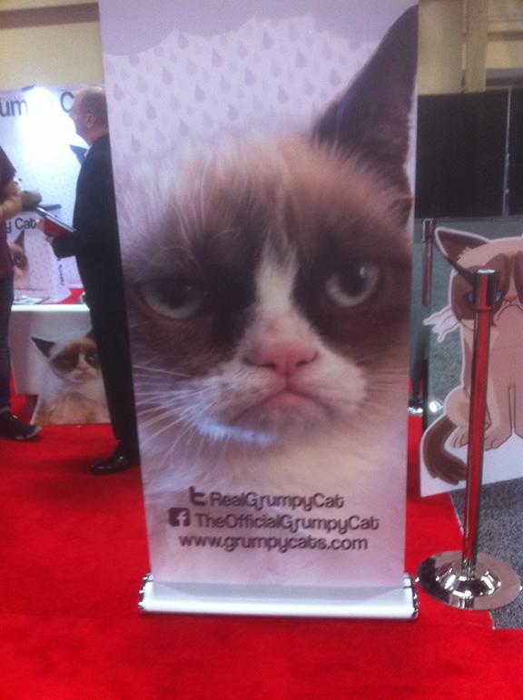 5_grumpycat