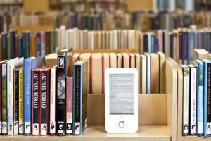 BookseReader