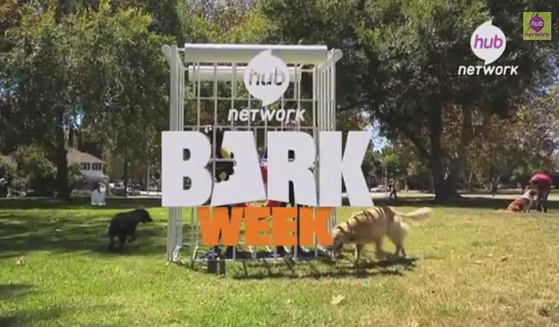BarkWeek2
