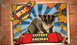 WAC Image - Cutest Animal
