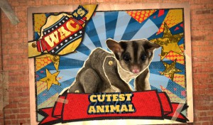 WAC Image - Cutest Animal