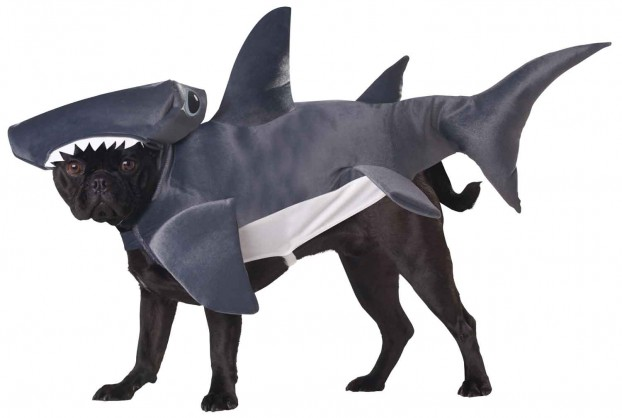 Shark Dog Costume