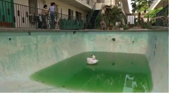 9_pool