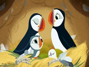 PuffinRock2