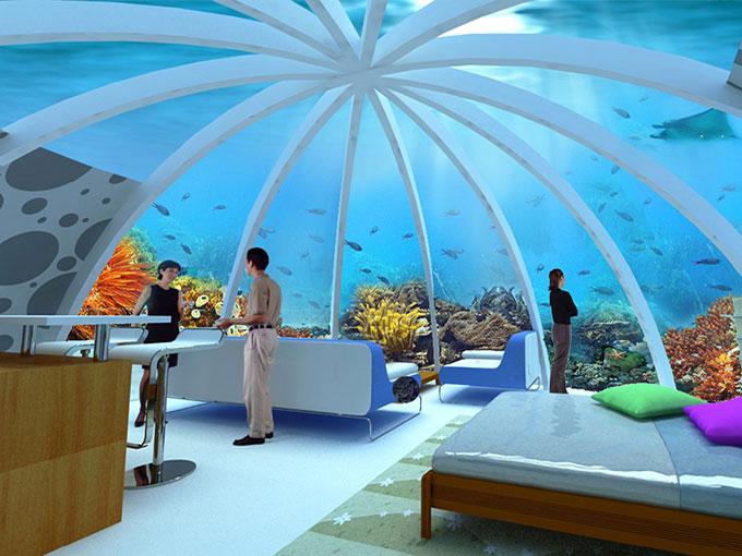 Coral-World
