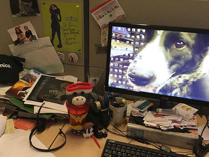 lana.desk