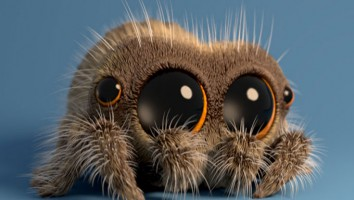 lucasthespider