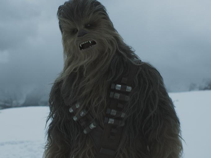 SW-Chewie