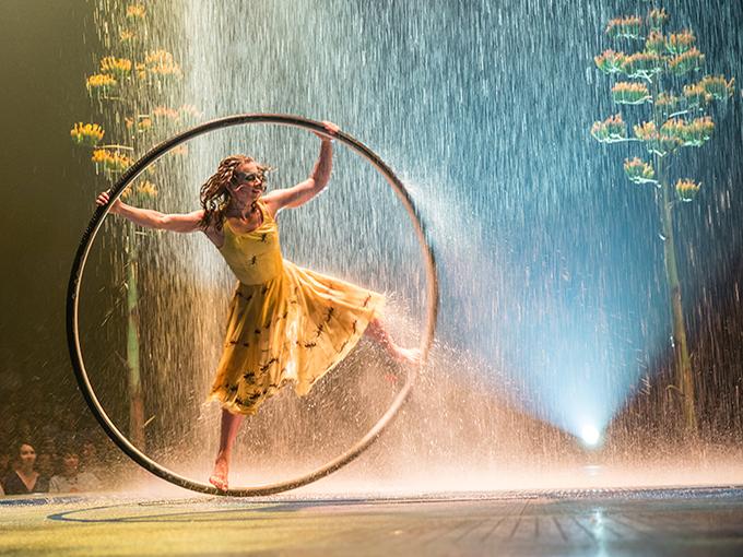 Cirque-Show