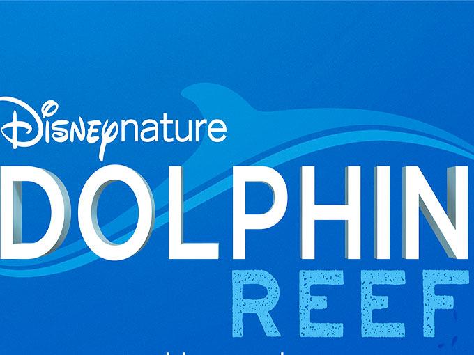 dolphinreef