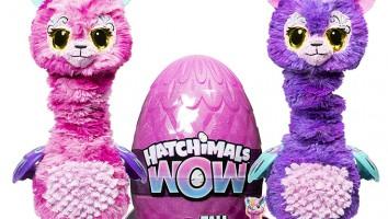 Hatchimals Q3