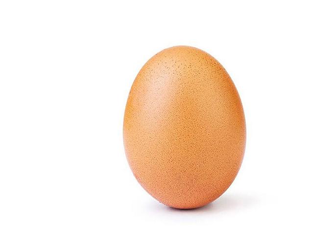 EggGang