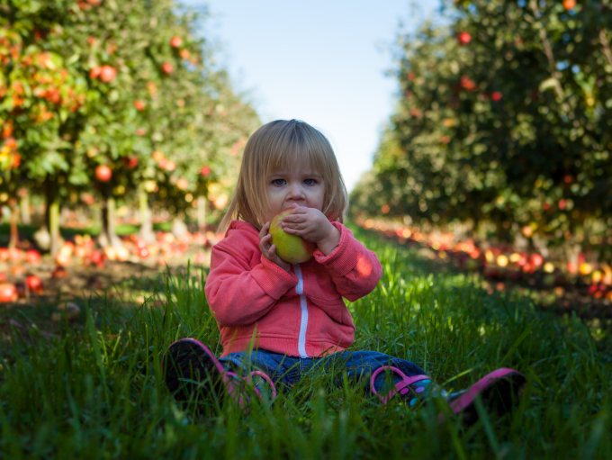 kids eating apple - unsplash credit Patrick Fore