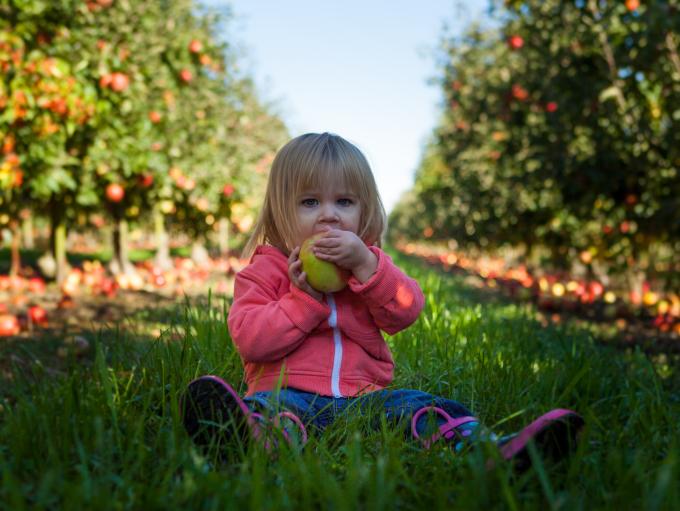 kids eating apple - unsplash credit Patrick Fore
